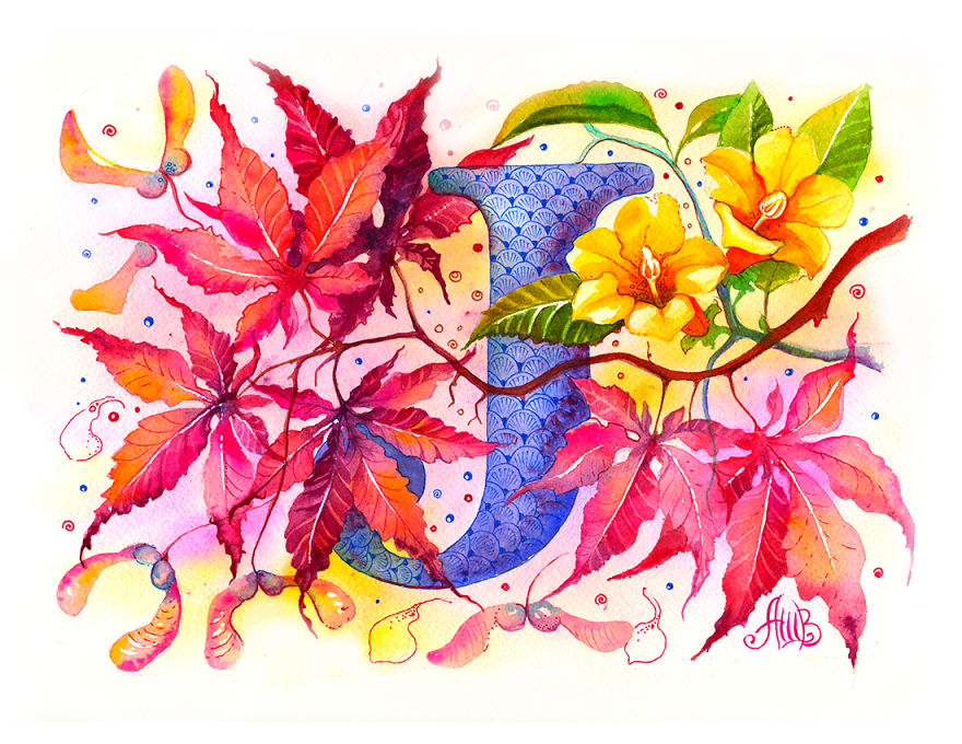 flower-alphabet-that-i-drew-for-my-1-year-old-son-21__880