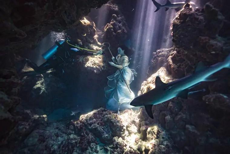 Benjamin-Von-Wong-Swimming-with-Sharks-5