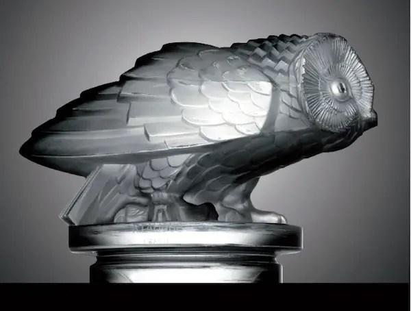 Owl-Hibou