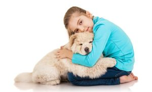 Little girl with chow chow puppie isolated on white background 1 Chow Chow Price Range From Various Types Of Breeders