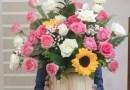 Cách chọn mua hoa và giữ hoa tươi được lâu hơn