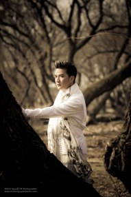 dvh_china_2010-7002