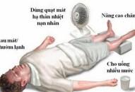 Sốc nhiệt do nắng nóng Coi chừng đột tử