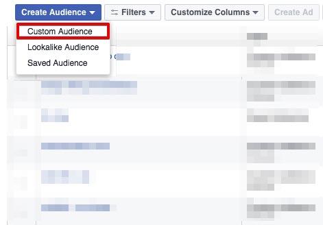 custom-audience-la-gi