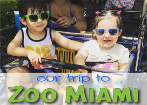 Visiting Zoo Miami with the Kids