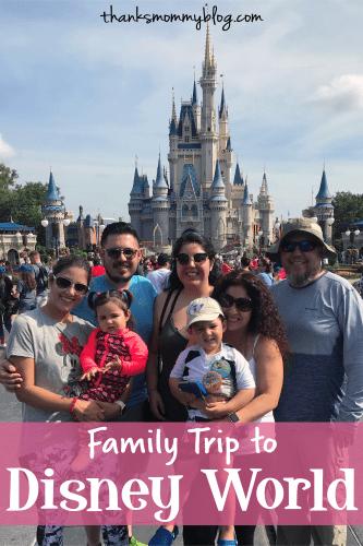 Family Trip to Disney World