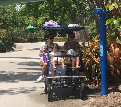 Our Trip to Zoo Miami -- Thanks Mommy Blog
