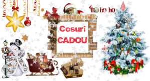 Cosuri cadou Craciun - Dulciuri sampanie - Produse traditionale romanesti