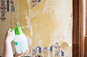 Cum sa cureti un tapet de pe perete