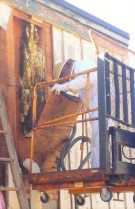 Removal of the wood panels revealed an amazing hive of bees!