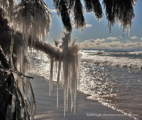 Winter Wonderland photo Rick Vuyst