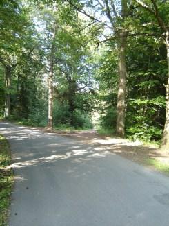 2.5 km-Runde - wieder weg von der Strasse