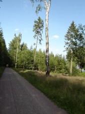 30 km - kurz vor Hartha