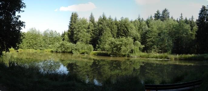 HM + 30 km - der erste Teich