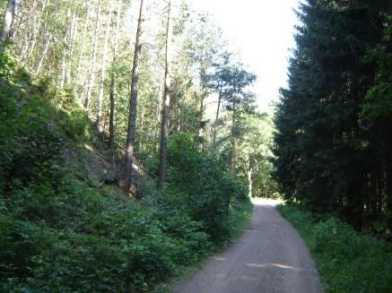 HM + 30 km - im Triebischtal