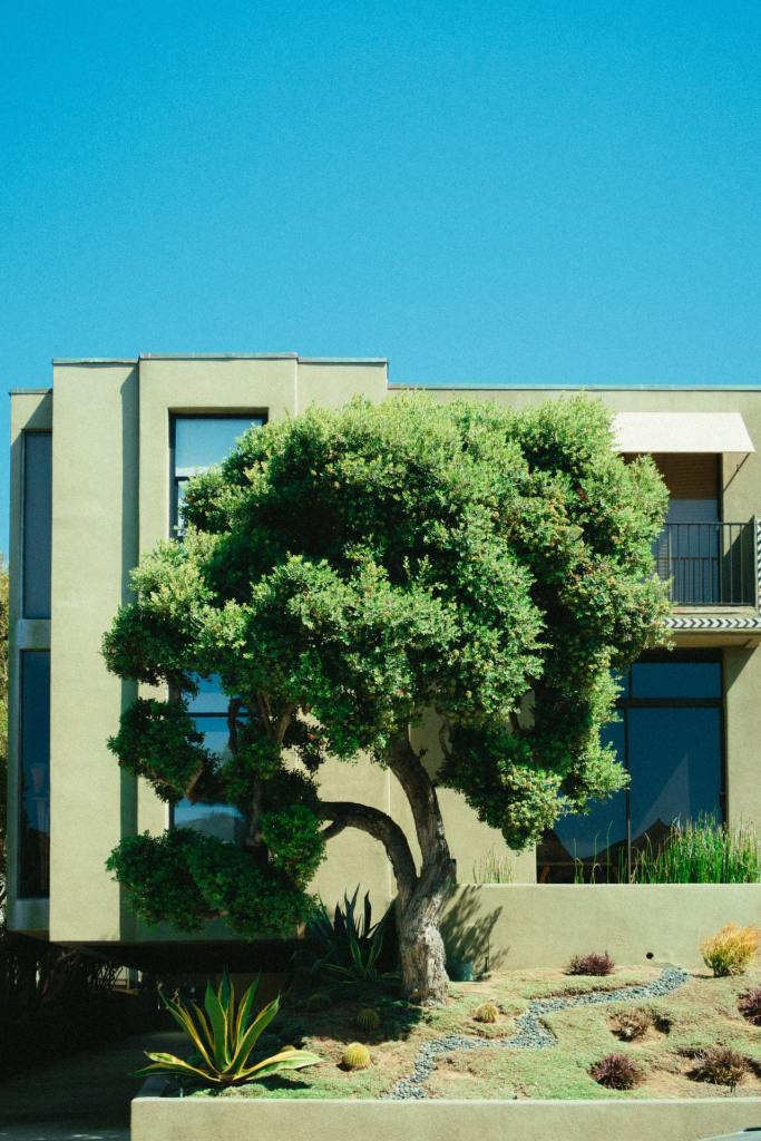 exterior-paint-pexels-athena