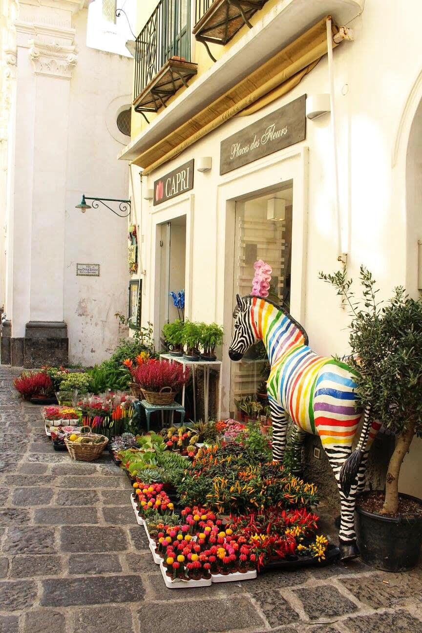 capri town florist flowers