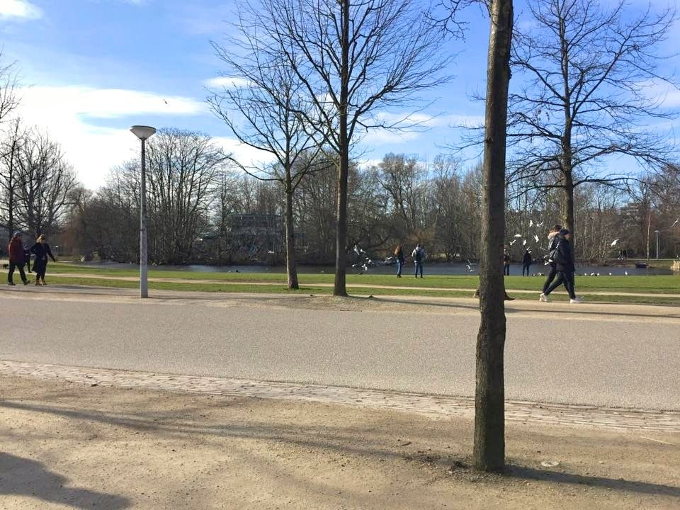 2 Days In Amsterdam - Travel Tales: Vondelpark