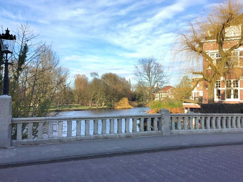 5 Tips To Know Before Visiting Amsterdam - Vondelpark