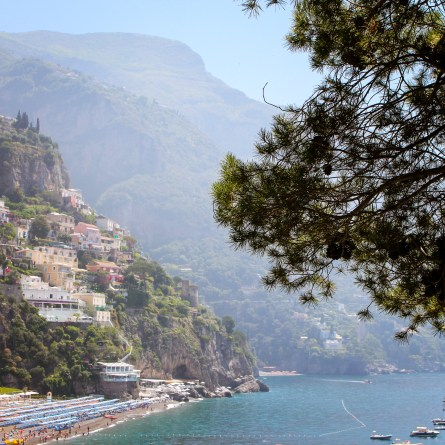 A pine tree is in the foreground with Positano's beach visible beyond. A good place for photography on the Amalfi Coast