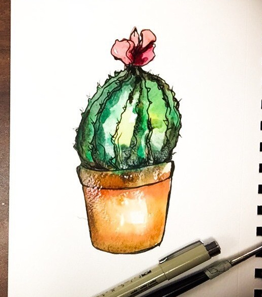 Watercolor is so fun and easy to use! Time lapse painting of a cactus with a bright flower on top.