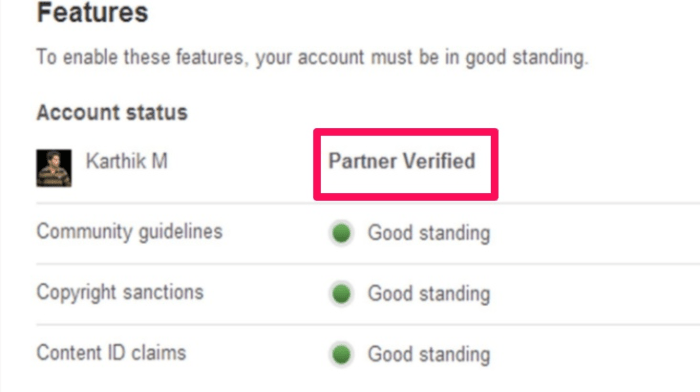 get verified on social media youTube example