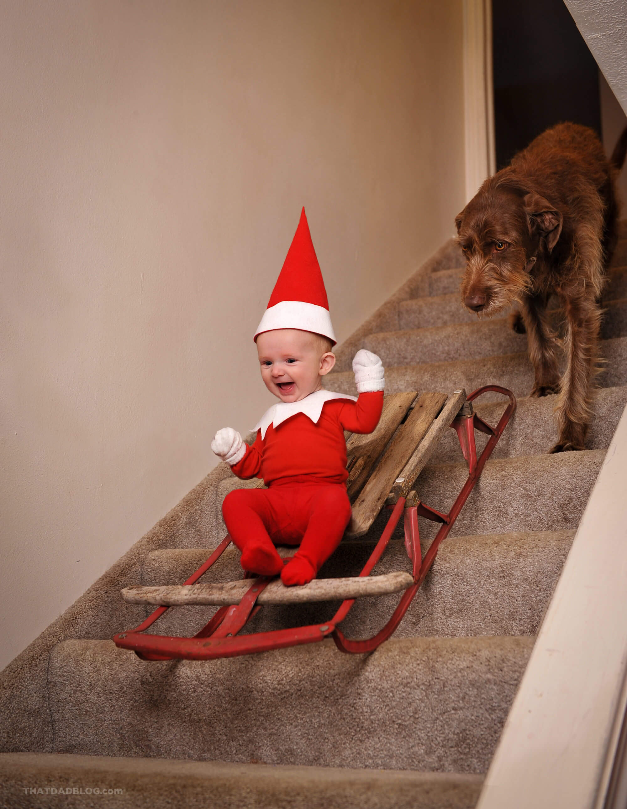 Elf on the shelf Sled final-7