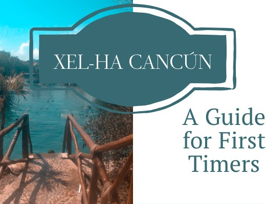 Experiencias Xcaret: Xel-Ha Guide for First Timers