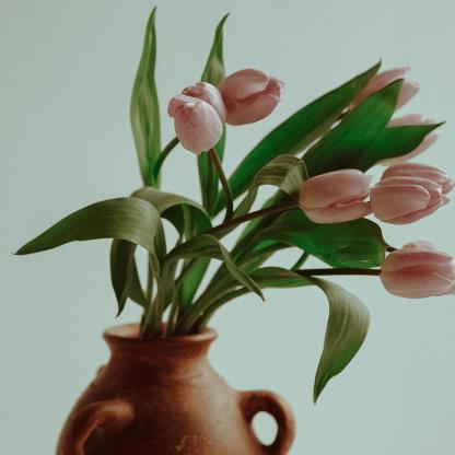 Spring Tulip Bouquet - 10 stems