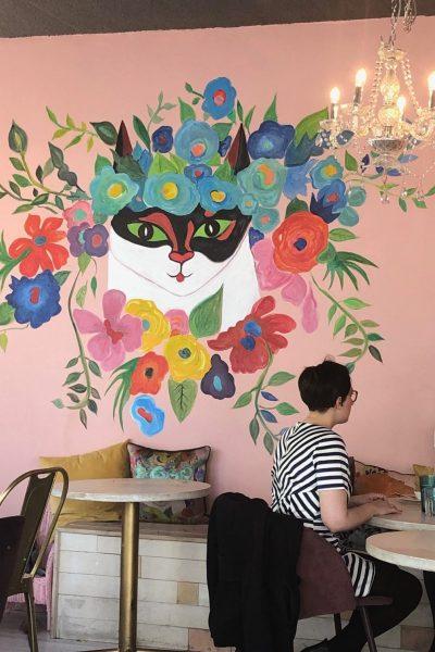 The Cat Cafe in Reykjavik!