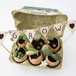 mini tuintje, ecologisch, duurzaam, planten kweken, kruiden kweken, eierschalen, plantenvoeding, milieuvriendelijk, kweekbakje, kweekbakjes, kruiden, kweken, biologisch, circulair