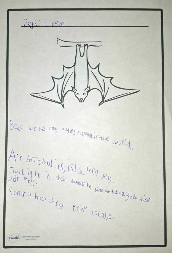 bats poem