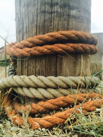 Rusted ropes