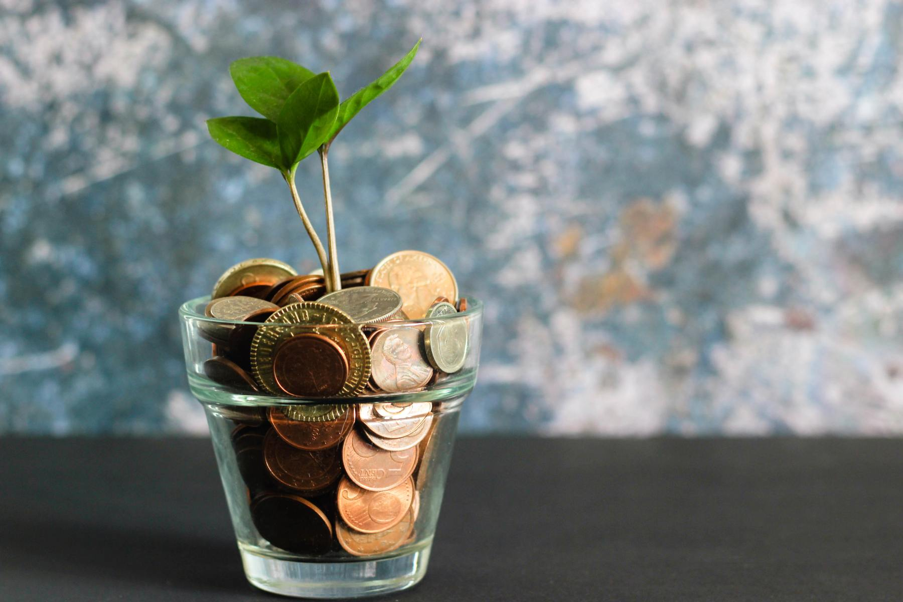 Glass of coins with green plant