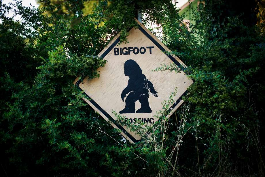 Where Are Most Bigfoot Sightings