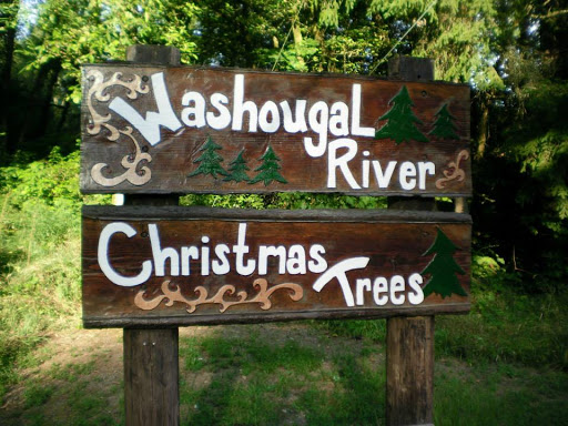 christmas tree - washougal river
