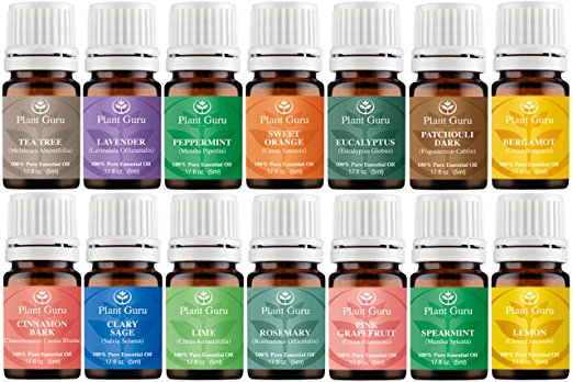 plant-guru-essential-oil-kit, hippie gifts