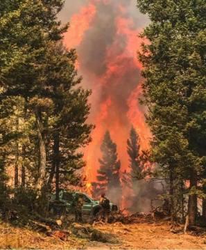 Sapphire Complex Fire in Montana