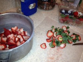 Cutting up Strawberries