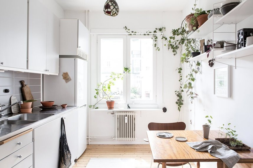scandinavian_home_interior_plants_2