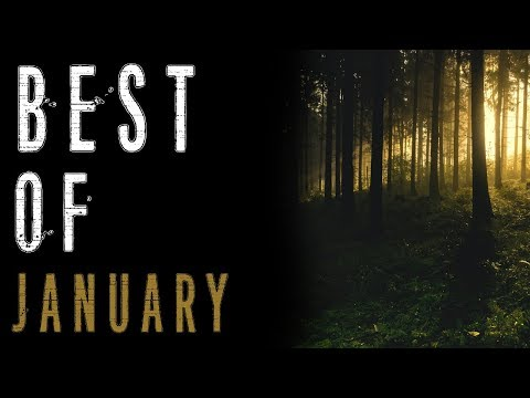 The Best of January (Ghost Stories, Humanoid Encounters, Paranormal Stories) | Mr. Davis