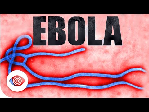 Could Ebola Be A Man-Made Bioweapon?