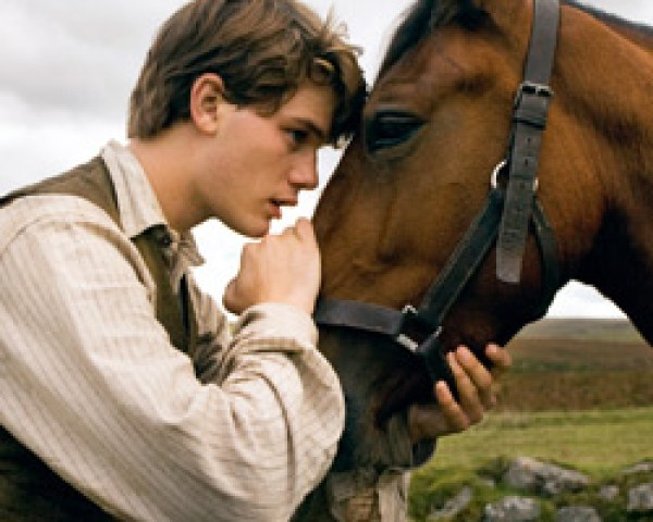 War Horse - Steven Spielberg F2