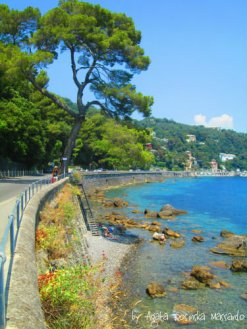 beach santa margherita ligure liguria