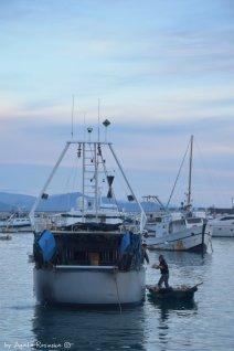 unloding fishing boat