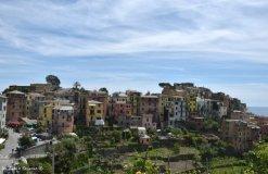 view on Corniglia