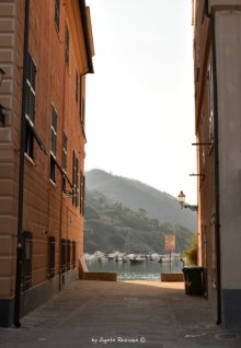 view from Piazza Matteotti