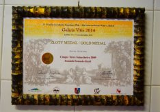 polish diploma