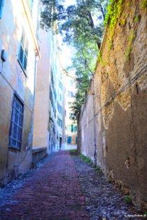 way to villa pallavicini