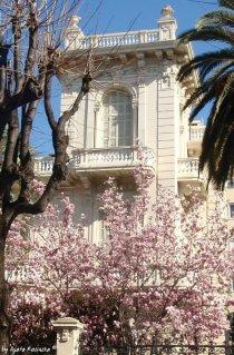 spring in Liguria